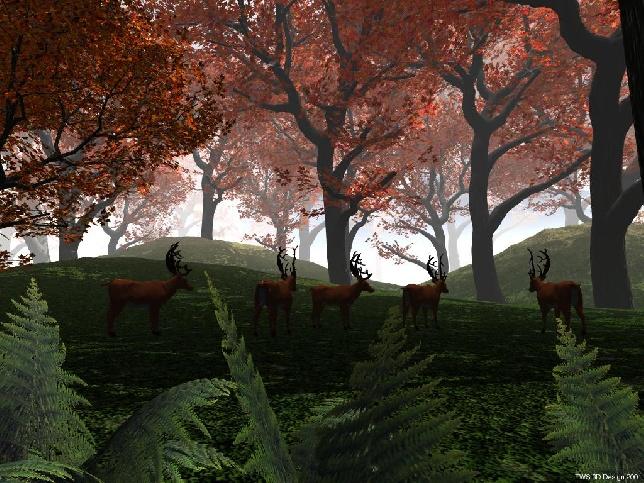 http://pro3d.de/cache/vs_Natur_autumnforest.jpg