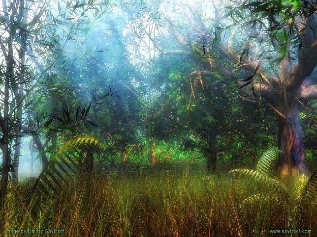 http://pro3d.de/cache/vs_Natur_forest.jpg