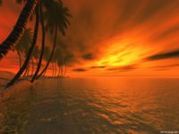 Hawai Evenings - TWS 3D